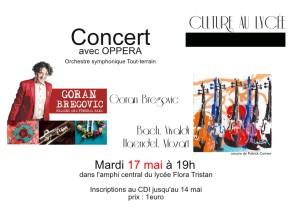 affiche_concert-page001